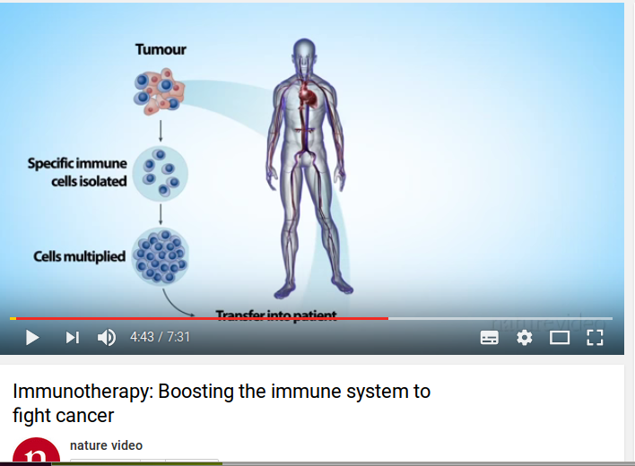 Immunotherapy: Boosting the immune system to fight cancer