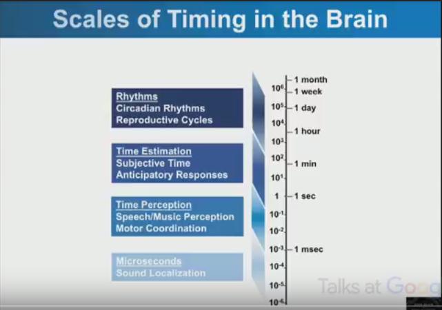 Vari tipi di orologi nel cervello