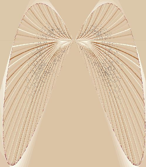 seashell fractal