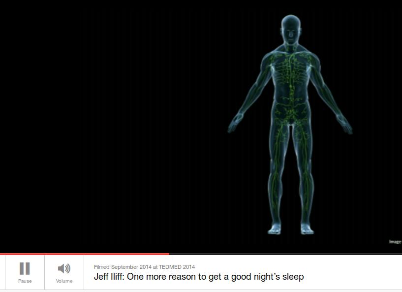 A che serve il sonno? A ripulire il cervello.